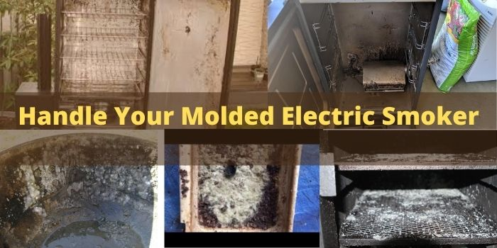 How to clean Electric Smoker with Mold