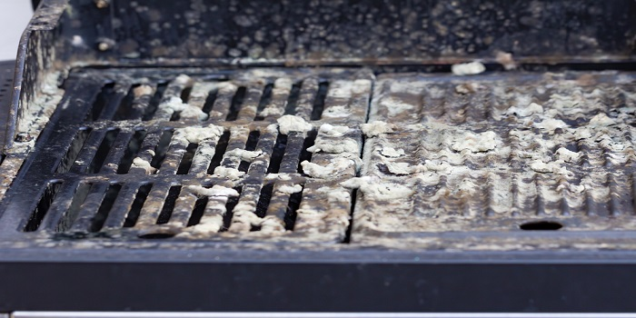 how to clean mold from kamado grill
