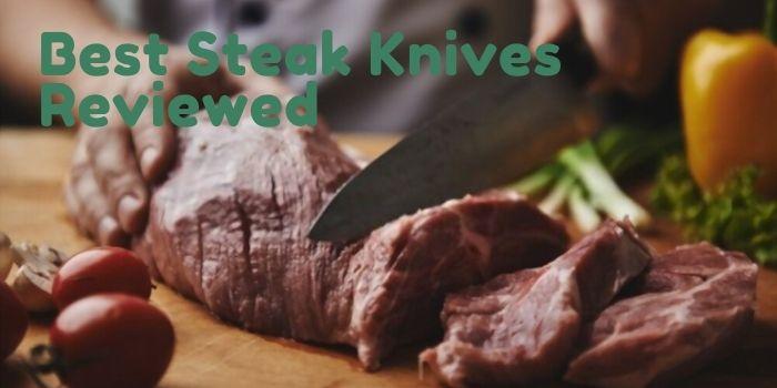 Best Steak Knives 2021
